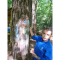 Wolf Pack Forest School