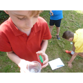 Outdoor Science