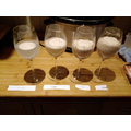 Conducting a fair test with yeast.