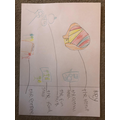 Lucy H's amazing circus map