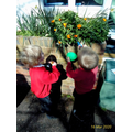Science Week - collecting rainbow coloured nature
