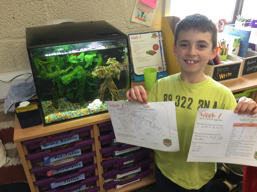Fishkeeper of the Week. Well done William!