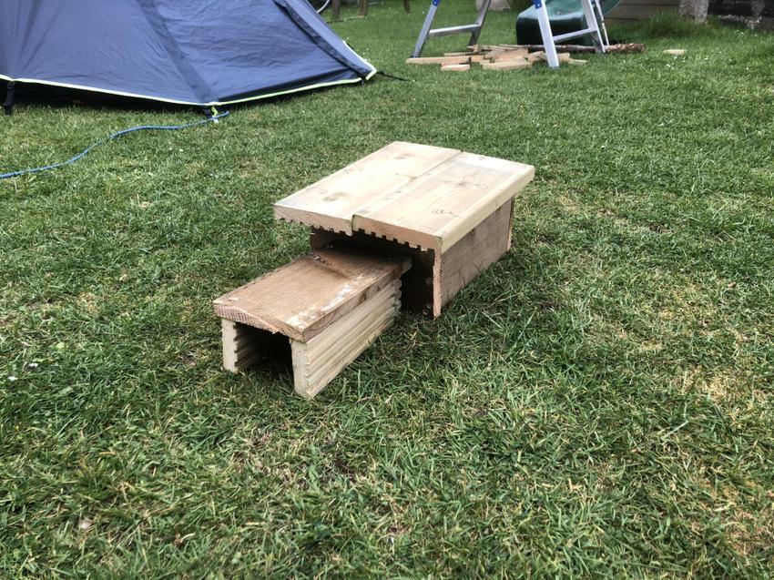 Anthony (Hazel) Built a Hedgehog House!