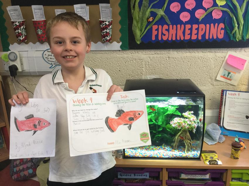 Our fish keeper of the week is Alfie!