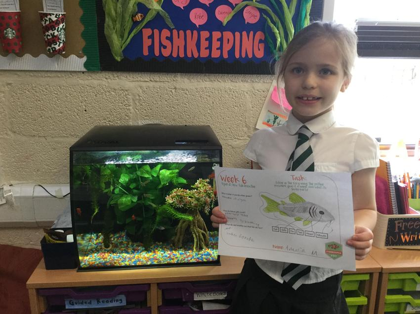 Fishkeeper of the Week. Well done Amelia!