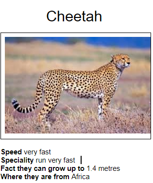 Ibrahim's Cheetah facts