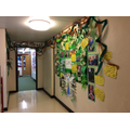 Our Y5/6 corridor has become a rainforest!