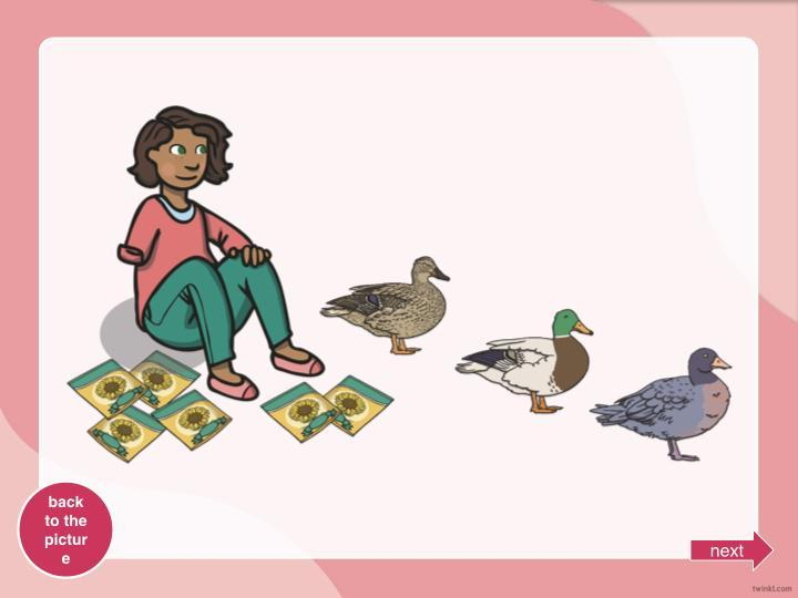 How many packets of seeds would each duck get?