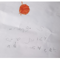 Ahyan wrote oranges are juicy and sweet