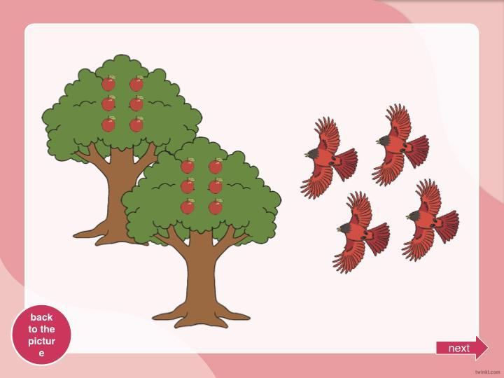How many apples will each bird get?