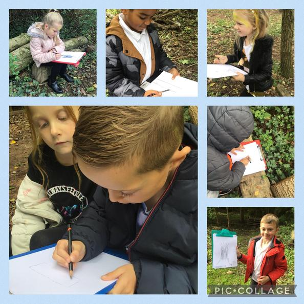We pretended to be Beatrix Potter. We went to the woods and sketched what we saw!