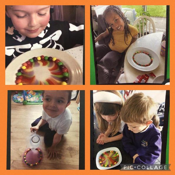 The children had fun learning science  at home.