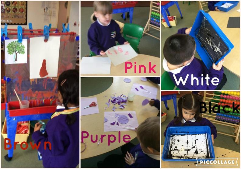 This week we have learnt about brown, purple, pink, black and white.