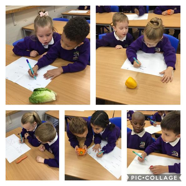 We thought of adjectives to describe the vegetables Peter stole from Mr McGregor's garden.