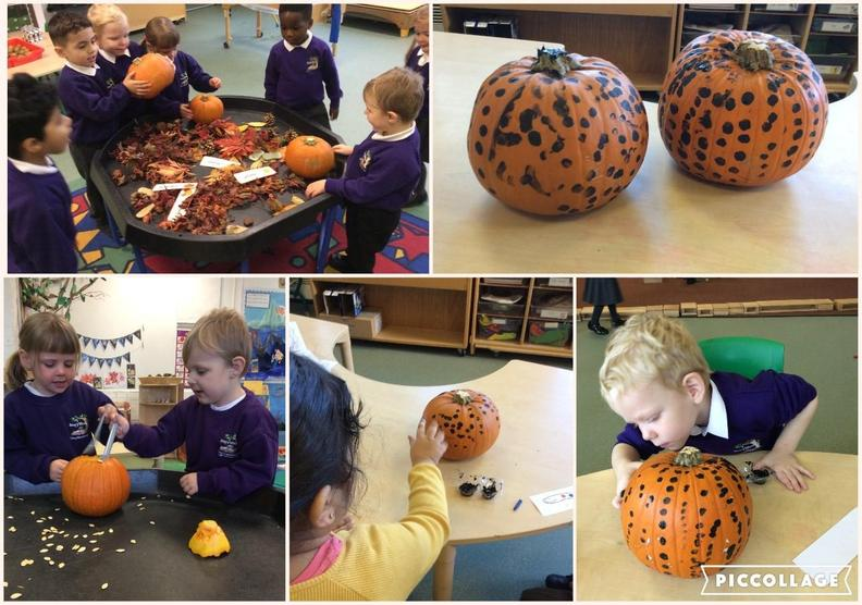 Investigating pumpkins and talking about Autumn