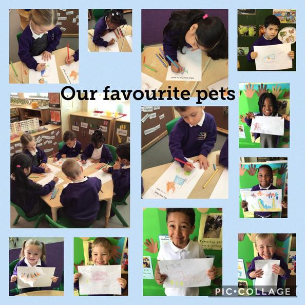 The children drew their favourite pets and thought about what they need to stay healthy.