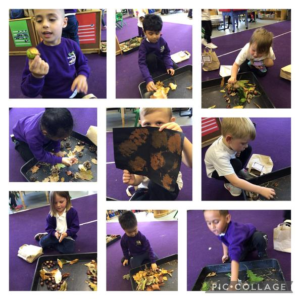 They enjoyed sharing their treasures with each other when they came back to school.