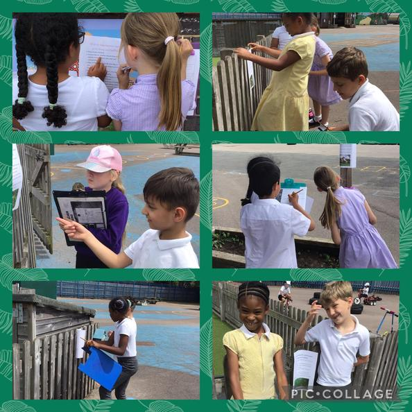 We went on an animal fact hunt!  We found out that animals need food, warmth and air!