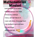 Mathematician Mindset