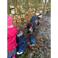 Searching for natural materials