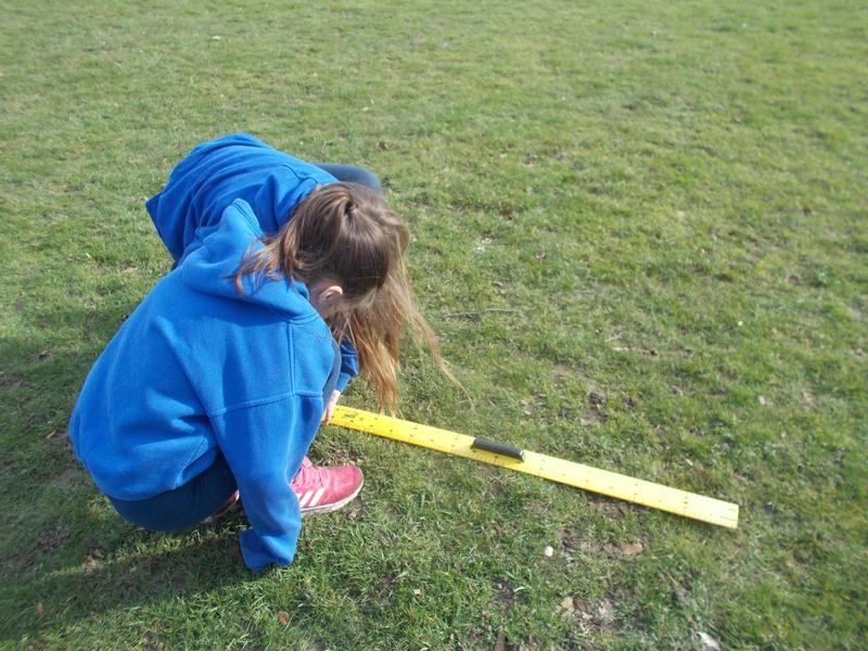 Outside we were calculating the height of trees.