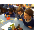Year 2 Experiments