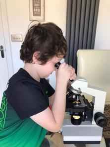 Fun with a microscope
