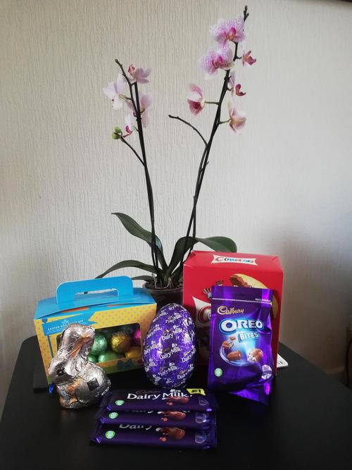 Gifts from the Easter Bunny!