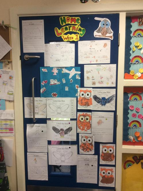 A selection of home learning that the children have done at home! Well done!
