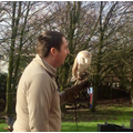JD the Barn Owl