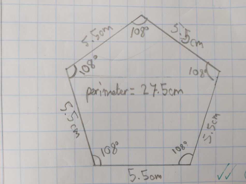 Challenge activity - draw a pentagon with perimeter 27.5cm. Well done Harry!