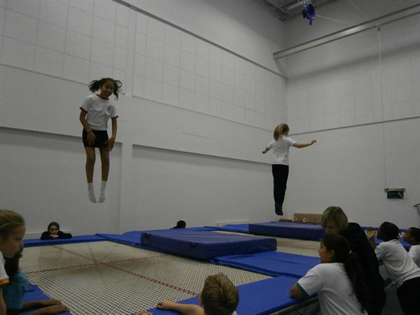 Trampolining at Harborne Academy