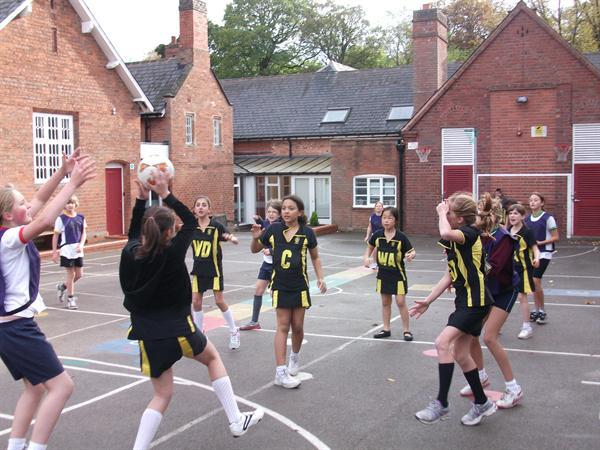 Netball Tournament Action Shot