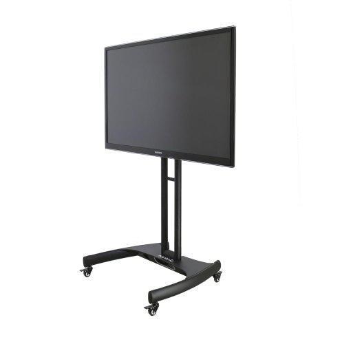 Mobile TV Display