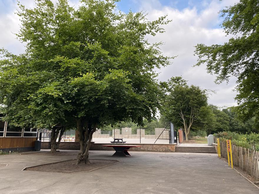 Courtyard Playground