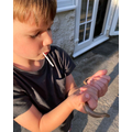 Finding and rescuing a slow worm
