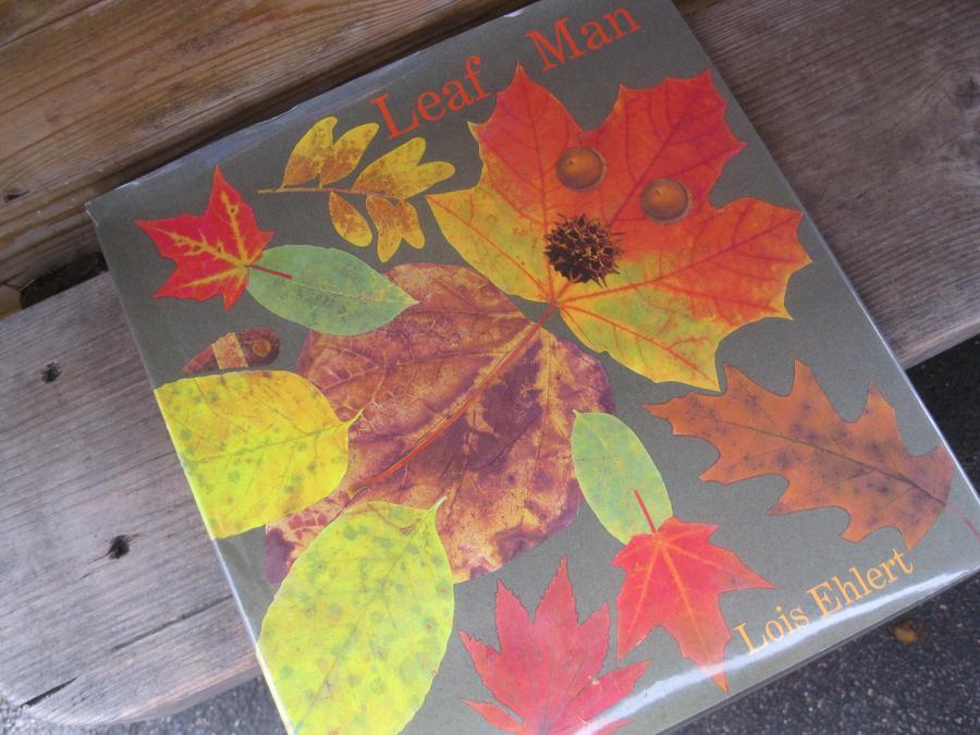 We read Leaf Man