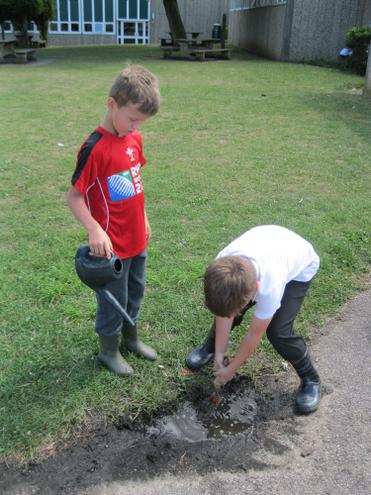 Some of us worked with water and mud.