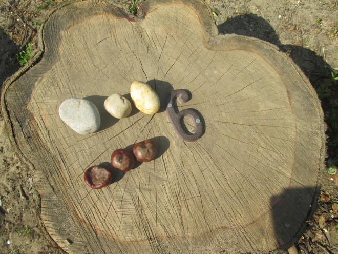 We used conkers and stones to explore