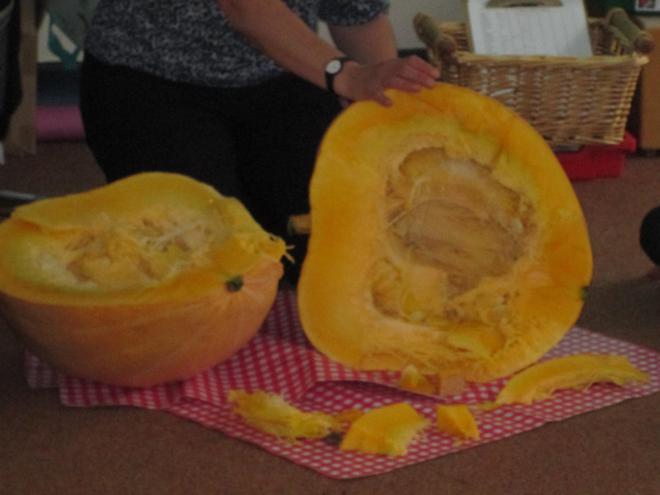 Joseph grew a giant pumpkin.