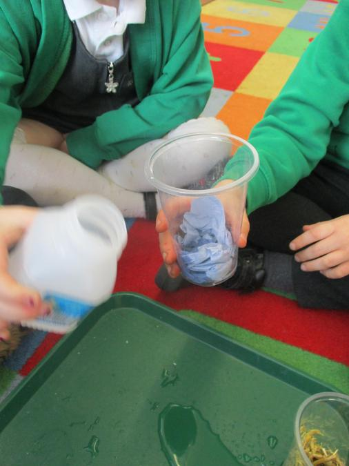 As part of our science experiment we
