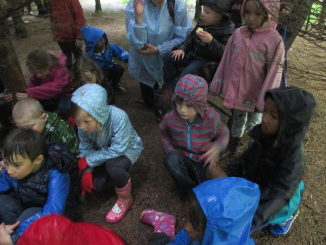 Sheltering under the trees in the rain