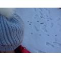 More footprints