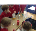 Finding out which things will dissolve in water