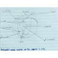Finlay's diagram for his experiment (Rowan)