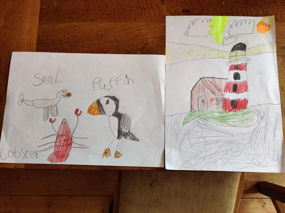 Matilda's Farne Island animal poster