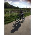 Bike Riding (Oak)