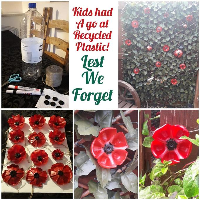 Annabella Kieran and Riegan's Poppies.jpg