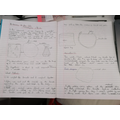 Sol's science experiment write up