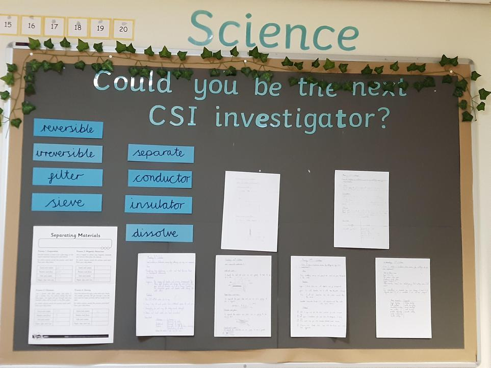 Year 5/6 Science Display